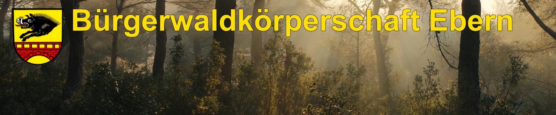 Bürgerwaldkörperschaft Ebern